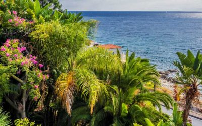 Discovering the most beautiful gardens in Liguria – Part One